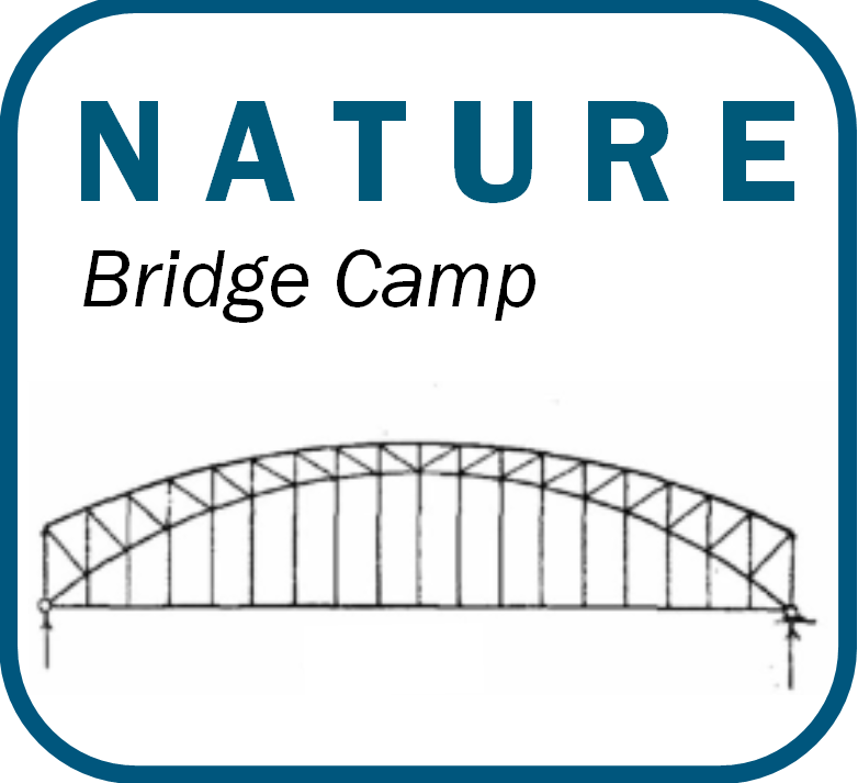 Bridge Camp