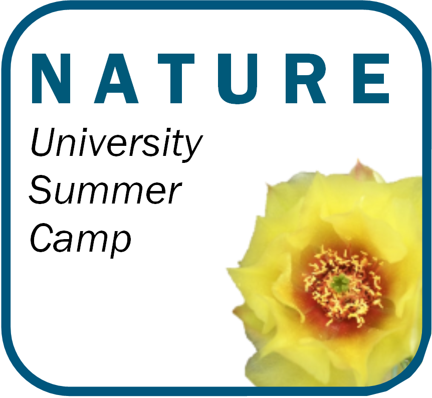 NATURE University Summer Camp
